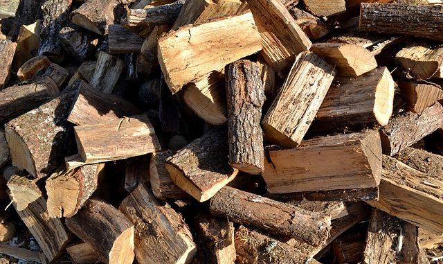 morceau de bois