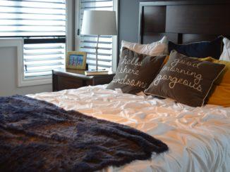 Punaise de lit dans la chambre